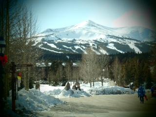 Breck 2